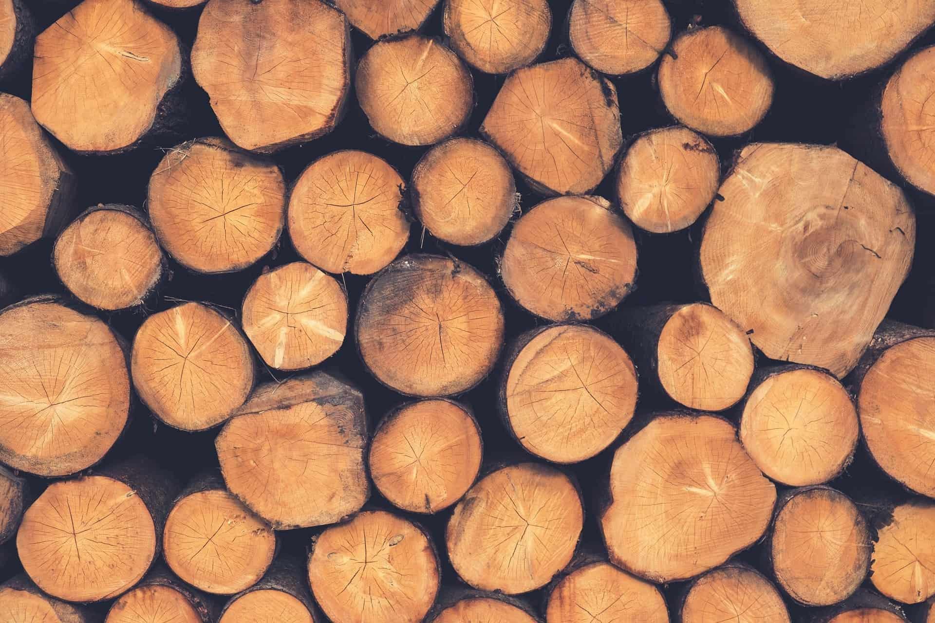 Holzspalter: Test & Empfehlungen (04/20)